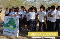 1650 trees were planted in Mexico on June 5th