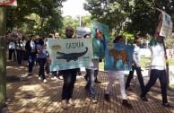 Paraguay celebra el Día Mundial de la Vida Silvestre y realiza homenaje a la flora y la fauna