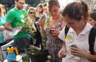 LOS ÁRBOLES: RESPONSABLES DEL EQUILIBRIO AMBIENTAL