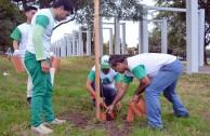 Activistas de la EMAP realizan labores de mantenimiento al Bosque William Soto