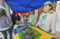 Cholita expone en Feria Ambiental