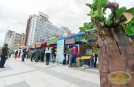 Feria ambiental
