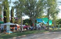 Pueblos Indígenas en Tarragona Celebran su Día