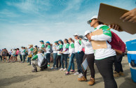 Volunteers participating during the International Coastal Cleanup Day
