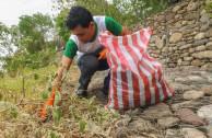 Cleaning the Suarez Laguna