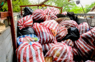 Recycling of collected waste