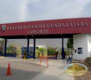 Universidad de Guadalajara.